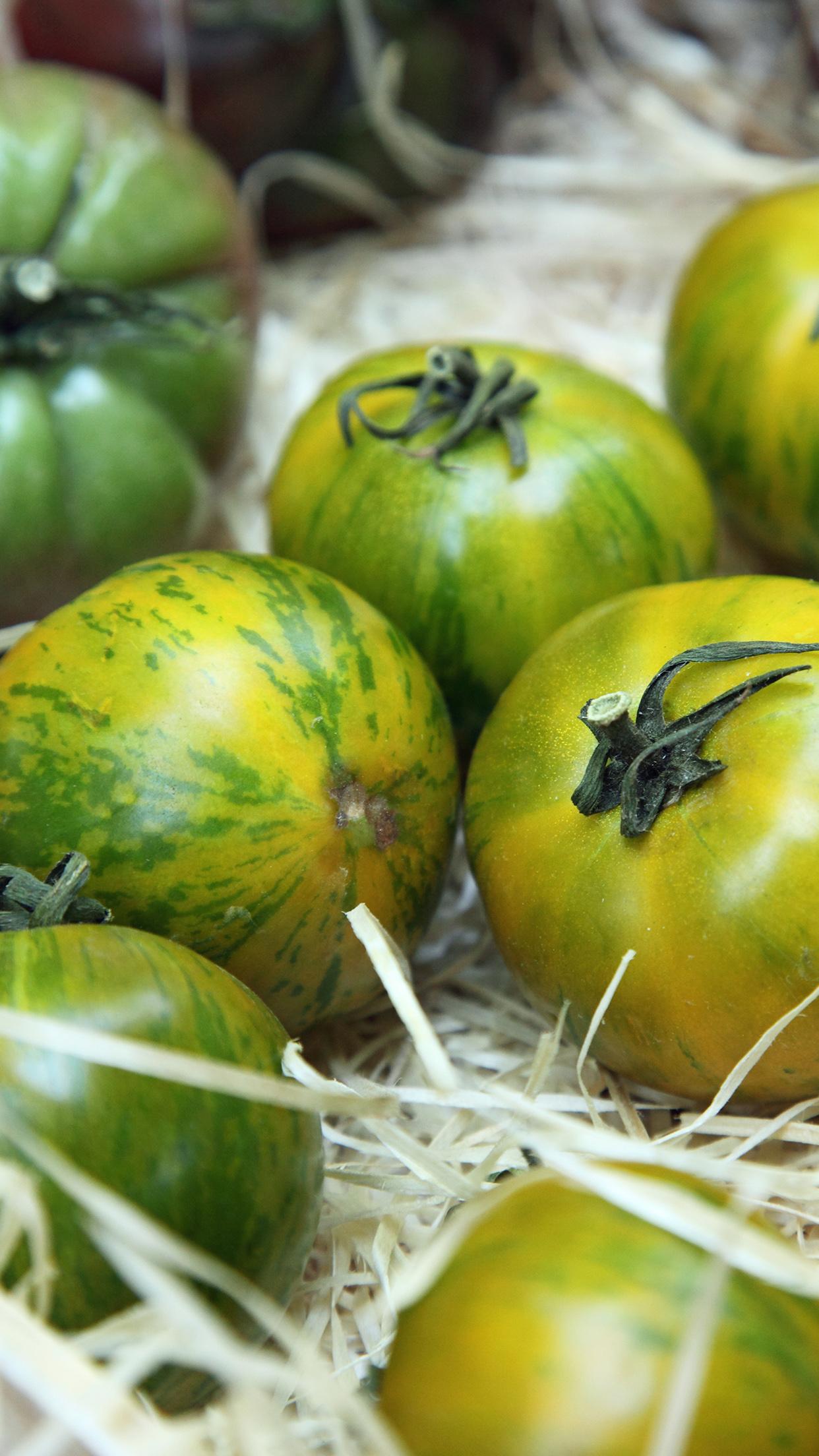 Pomodoro green zebra | Flick on food